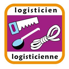 Insigne logisticien/logisticienne