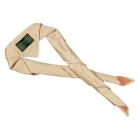 Foulard de cham