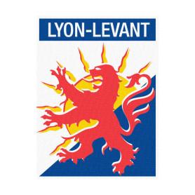 Insigne de Territoire LYON LEVANT