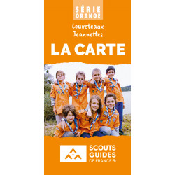 Carte série orange par lot de 10