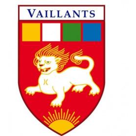 Insigne branche Vaillant - EDLN