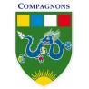 Insigne branche Compagnon - EDLN