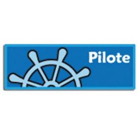 Insigne Pilote