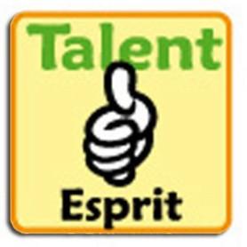 Insigne Talent Esprit