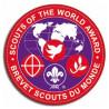 Insigne brevet scouts du monde